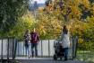 I loňský rok byl v Česku teplejší než obvykle, ne ale rekordně