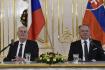 Zeman se vyslovil pro otevření Českého domu v Bratislavě