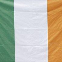 Irsko - vlajka - ilustrační foto.