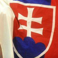 Slovensko - vlajka - ilustrační foto.