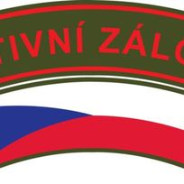 Aktivní zálohy české armády mají nové logo. Tvoří ho dvě nahoru prohnuté zelené pásky. Na horní je červený nápis AKTIVNÍ ZÁLOHA vyvedený velkými tiskacími písmeny v červeném orámování, na dolní je prapor České republiky. Barevné provedení horní pásky vychází podle Vojenského historického ústavu z ramenní výšivky CZECHOSLOVAKIA, která byla zavedena na konci září 1940 ve Velké Británii.