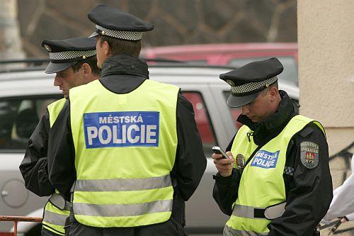 http://i3.cn.cz/1182342914_policie-mestska2.jpg