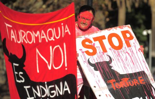 Protest před katalánským parlamentem proti býčím zápasům.