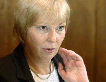 Velvyslankyně při Evropsk� unii Milena Vicenov�.