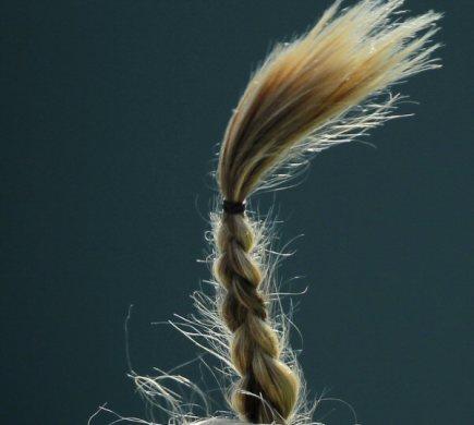 Centrum zdravy vlas
