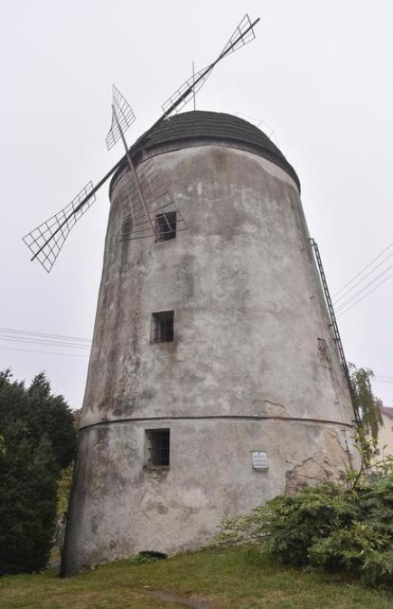 Nevyužívaný třebíčský větrný mlýn holandského typu z roku 1836, sloužící v minulosti ke mletí takzvaného třísla pro zdejší koželuhy, je v havarijním stavu. Radnice plánuje jeho rekonstrukci, která by měla být hotová do dvou až tří let. Poté bude pro atraktivní technickou památku hledat nejvhodnější využití.