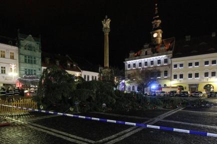 Česká Lípa přišla o svůj vánoční strom na náměstí. Dvacetimetrový smrk spadl v noci 1. prosince zřejmě v důsledku silného větru. Nikomu se nic nestalo.