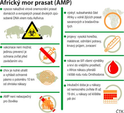 Africký mor prasat (AMP) - grafický profil se základními údaji.