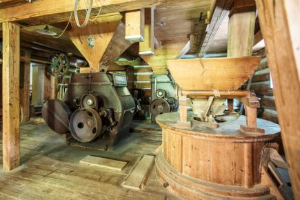 Novou atrakcí pro turisty se v Krkonoších pomalu stává Janatův mlýn v Buřanech na Semilsku (na snímku z 10. srpna). Letos slaví 250 let od první zmínky, patří mezi národní kulturní památky.