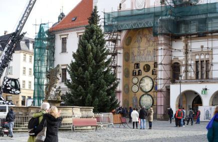 Specializovaná firma nainstalovala 12. listopadu na Horním náměstí v centru Olomouce vánoční strom. Dvanáctimetrový, 55 let starý smrk letos pochází z Postřelmova na Šumpersku z pozemku Márie Kloučkové. Slavnostní rozsvícení se uskuteční 23. listopadu, kdy začne také vánoční jarmark s prodejem vánočního zboží, punče a bohatým kulturním programem. Na snímku je v pozadí renesanční radnice s orlojem.