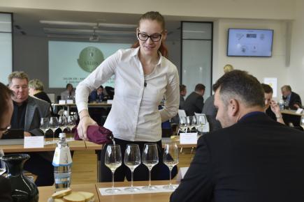 Šampiona Salonu vín - národní soutěže vín vybírala 7. prosince ve Valticích na Břeclavsku odborná porota z finálové dvoustovky vzorků. Celkem bylo v soutěži 2020 vín.