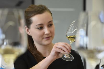 Šampiona Salonu vín - národní soutěže vín vybírala 7. prosince ve Valticích na Břeclavsku odborná porota z finálové dvoustovky vzorků. Celkem bylo v soutěži 2020 vín. Na snímku je degustátorka Libuše Vrbová.