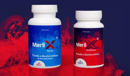 MerliX