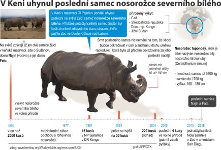Grafický profil se základními údaji o nosorožci severním bílém.