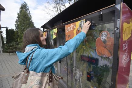 Pokladnička u vchodu do zlínské zoo instalovaná v rámci projektu 4Nature.