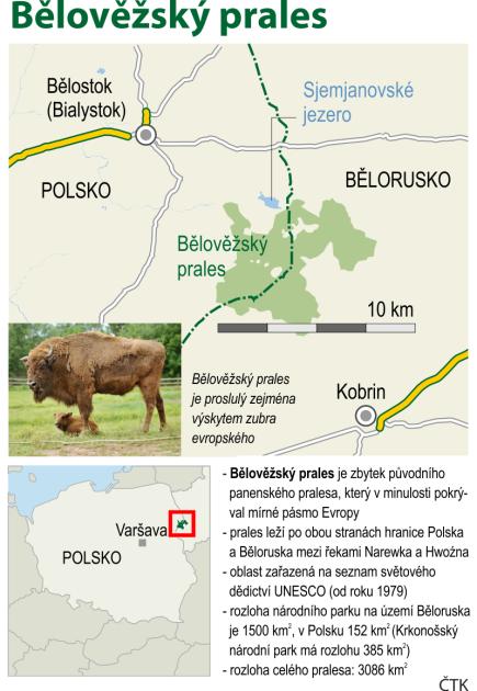 Bělověžský prales, grafický profil se základními údaji.