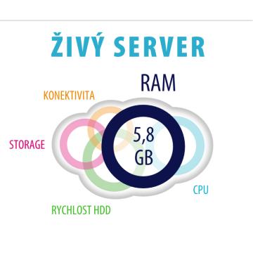 Master Internet: Živý server v akci