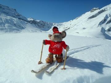 Plyšová myš Kabir dobyla severní pól