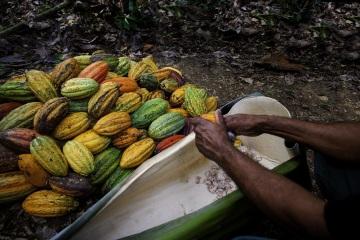 Karibik má novou metropoli gastronomie