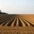 Vodní eroze ohrožuje půdu