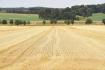 Sklizené pole - ilustrační foto.