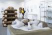 Muzeum v Turnově má výstavu věnovanou pohřebním rituálům i světu popravišť
