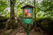Národní přírodní rezervace Jizerskohorské bučiny v Jizerských horách (na snímku z 28. července 2021), která nově patří na seznam světového přírodního a kulturního dědictví UNESCO.