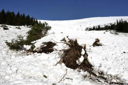 Pátrací akce ve velké lavině zřícené 10. února do Modrého dolu v Krkonoších pomalu končí. Záchranáři v laviništi nikoho nenalezli. Před polednem 11. února na místě zůstali čtyři záchranáři, kteří měřili rozsah laviny.