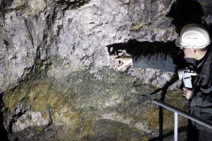 Otto Janout, jeden ze zakladatelů společnosti Geomet, ukazuje na rudu,  obsahující lithium uvnitř bývalého dolu blízko Cínovce.