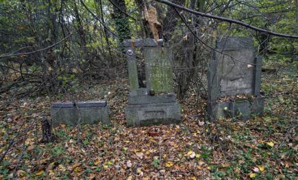 Skupina nadšenců se v Karviné snaží zachránit starý evangelický hřbitov z roku 1903 (na snímku z 21. října). Na zanedbaném a zarostlém hřbitově už zorganizovali dvě brigády, další chystají ještě v tomto týdnu a podobné akce plánují také na jaře. Evangelický hřbitov i s kaplí je v karvinské části Doly mezi někdejšími hornickými koloniemi Nový Jork a Mexiko.