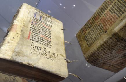 V Oblastním muzeu v Litoměřicích byla 9. listopadu zahájena výstava Tajemství barokní knihy. Představuje umění barokního knihvazačství, litoměřické tiskaře období baroka i způsob, jakým jsou vzácné knižní památky dnes restaurovány. Na snímku jsou pergamenové vazby.