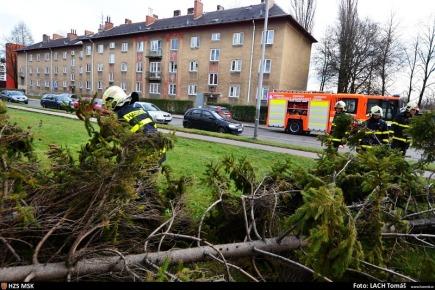 Na snímku z 12. prosince hasiči odstraňují strom, který spadl v ostravské Gajdošově ulici.
