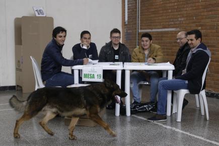 Prezidentské volby v Kolumbii. Na snímku víhá do volební místností v Bogotě pes.