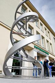 Nová socha znázorňující DNA byla odhalena 13. února 2019 v areálu Biofyzikálního ústavu Akademie věd v Královopolské ulici v Brně. Odkazuje k výzkumnému programu ústavu.