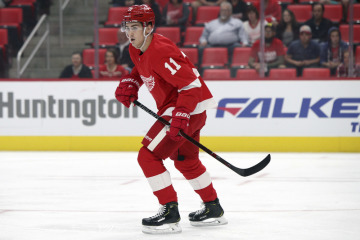 Hokejista Detroitu Red Wings Filip Zadina.
