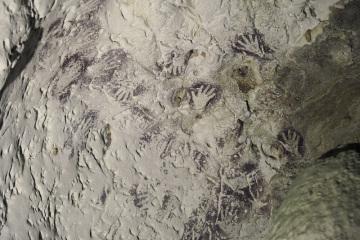 Prehistorická malba v odlehlé jeskyni na ostrově Borneo v Indonésii.