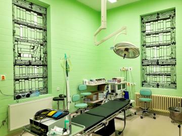 Rozměrné malby zdobí okna operačních sálů Kliniky otorinolaryngologie a chirurgie hlavy a krku Fakultní nemocnice Olomouc.