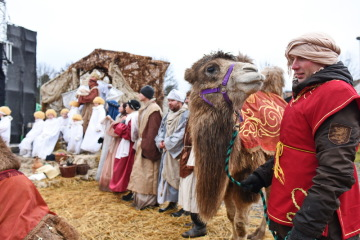 Jeden z dvojice vystupujících velbloudů byl 24. prosince 2018 v čele procesí v měřínském betlémě.
