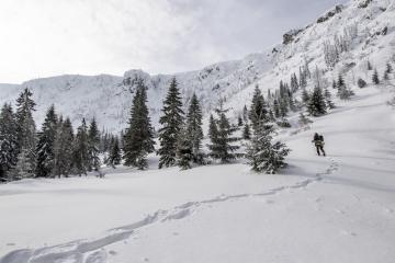 Vědci ze Správy Krkonošského národního parku (KRNAP) měřili 1. února 2019 množství sněhu v lavinovém Labském dole (na snímku) v Krkonoších. V odlehlém údolí v lokalitě Schustlerova zahrádka odborníci naměřili 253 centimetrů sněhu. Považují to za pozitivní signál pro celé hory. Pokud na jaře sníh odtaje postupně, sníží se v Krkonoších deficit vody, což by mohlo také snížit dopad sucha poslední dekády na populace vzácných druhů rostlin.