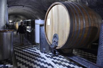 Sudy ve sklepích pod Arcibiskupským zámkem v Kroměříži, kde olomoucký arcibiskup Jan Graubner 8. února 2019 požehnal mešním vínům z loňské úrody moravských vinic. Vína poslouží k liturgickým účelům, ochutnat je ale budou moci také zákazníci v běžném prodeji.