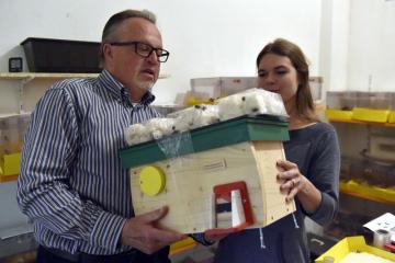 Společnost Zemědělský výzkum v Troubsku na Brněnsku chová laboratorně čmeláky zemní. Zájem o ně mají jak zahrádkáři či zemědělci, kteří potřebují opylovače, tak nadšenci, kteří chtějí pomoct přírodě a umístit do ní chráněného živočicha. Na snímku z 16. května 2019 jsou Alena Votavová, která se chovu a výzkumu věnuje, a zákazník Jiří Weberschinke s novým čmelínem.