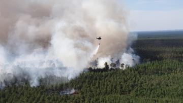 Helikoptéra hasí lesní požár jižně od Berlína.