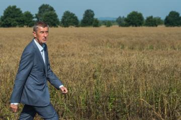 Premiér Andrej Babiš prochází 18. července 2019 kolem pole s řepkou olejkou při návštěvě obce Heřmaň v Jihočeském kraji.