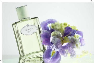 Parfém Prada Infusion D'Iris.