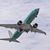 Boeing prověřuje kvůli možné závadě další typ svých letadel